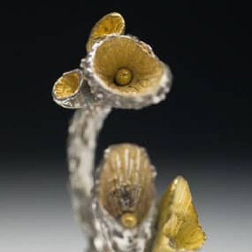 Silver and Gold Pod Ring by Julia Rai